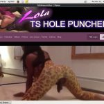 TS Hole Puncher Trial For Free