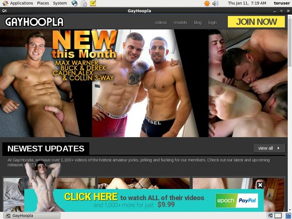 Register Gay Hoopla